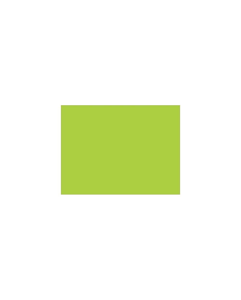 Sets de table, vert été.Carton de 4 x 500