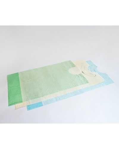 Bavoirs à usage unique, 2 plis. Carton de 6 x 100