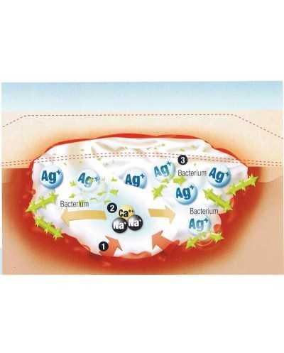 Boîte de 5 compresses Suprasorb A - Alginate + Ag - Argent, 10 x 20 cm, stérile